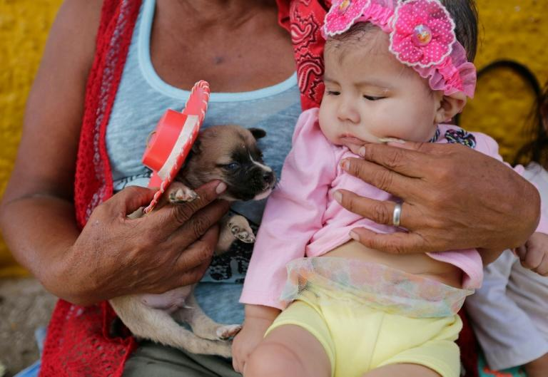 Dressed in an array of costumes, dogs in Mayasa, Nicaragua joined their owners for a colorful celebration recognizing the patron saint of beggars and the sick