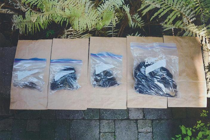 <p>Ziplock bags of hair stored by McArthur in the shed of a home south of Mt. Pleasant Cemetery. After police located the bags, the homeowners confirmed that the hair did not belong to them. Police also know that McArthur shaved many of his victims' heads and beards before burying them on another property at 53 Mallory Cres. (Photo provided by the Crown) </p>