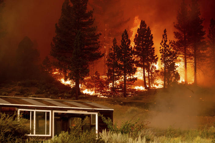 The Tamarack Fire burns behind a greenhouse in the Markleeville community of Alpine County, Calif., on Saturday, July 17, 2021. (AP Photo/Noah Berger)