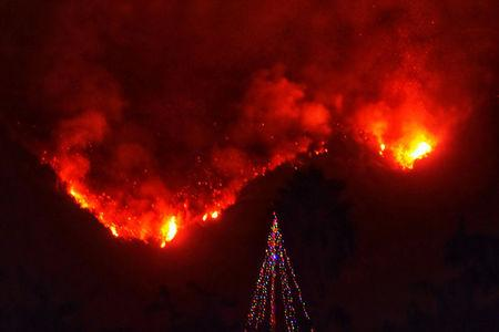 With Thomas wildfire flames burning behind it, a Christmas Tree stands as a lone sentinel in the front yard of an evacuated home in this social media photo by Santa Barbara County Fire Department in Carpinteria, California, U.S. on December 11, 2017.  Courtesy Mike Eliason/Santa Barbara County Fire Department/Handout via REUTERS