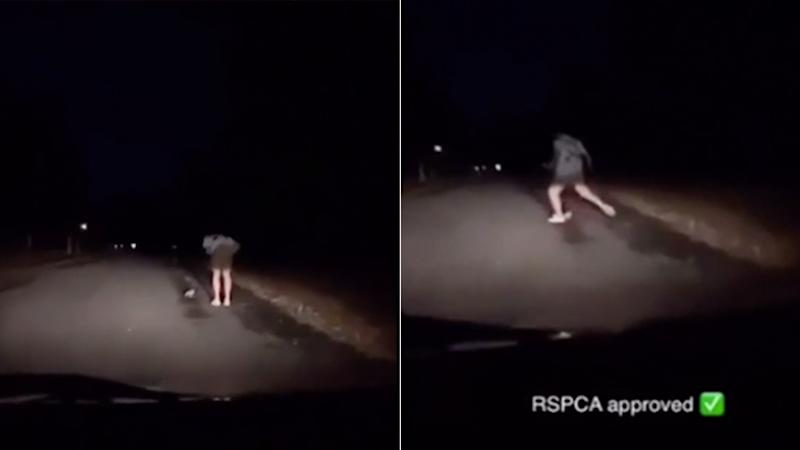 Two stills of a Snapchat video showing a Queensland man kicking an owl in the middle of the road.