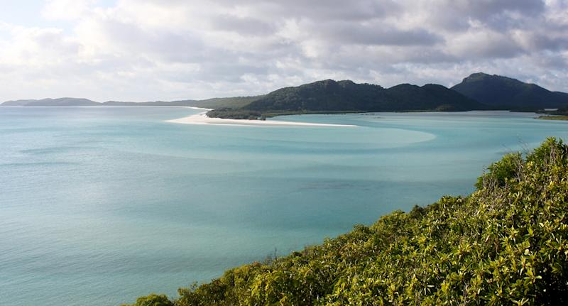 Whitsundays shark attack victim dies