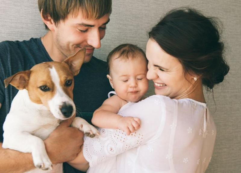 Introducing a baby to your dog can be stress-free. Photo: Getty