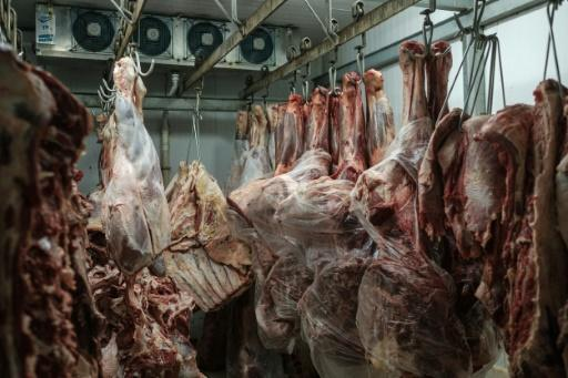 Brazil tainted meat: Three key markets resume imports
