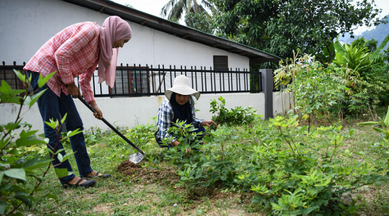 Gardening was a healthy and rewarding way to pass the time during lockdown. ― Bernama pic