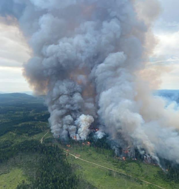 The BC Wildfire Service set a controlled burn on Monday in an attempt to head off the Deka Lake wildfire in the Cariboo region. (BC Wildfire Service - image credit)