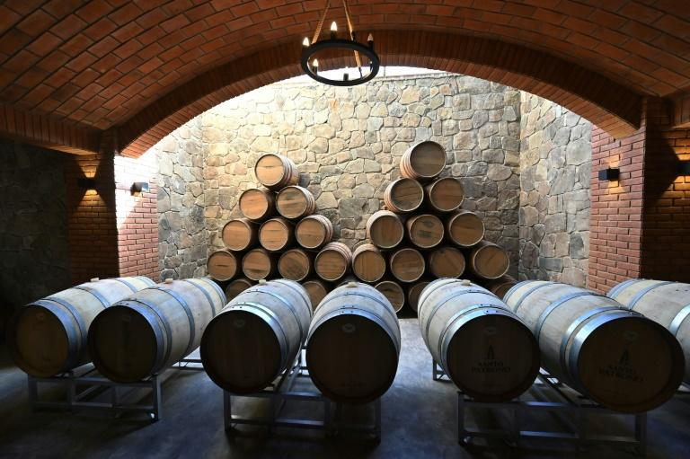 View of oak casks where the wine is fermented at the Kuhlmann Winery, in Valle de la Concepcion