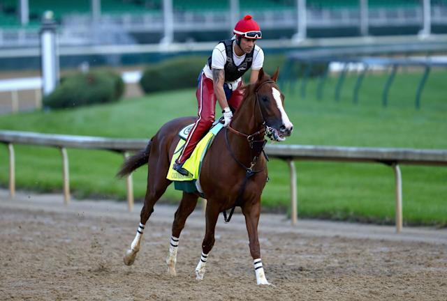 LOUISVILLE, KY - APRIL 30: California Chrome runs on the track during the morning training for the Kentucky Derby at Churchill Downs on April 30, 2014 in Louisville, Kentucky. (Photo by Andy Lyons/Getty Images)