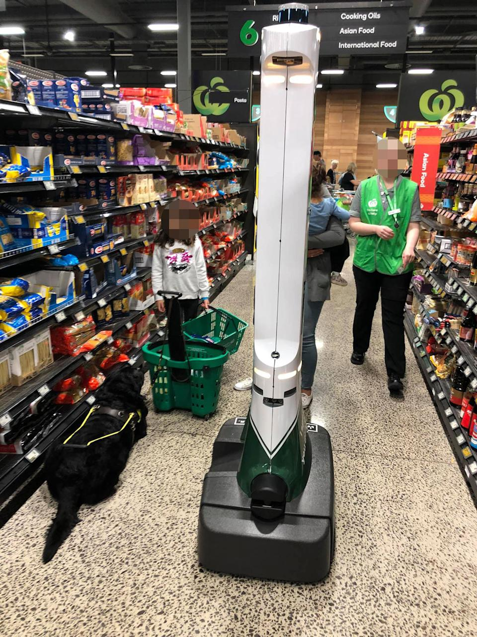 A Woolworths OH&S robot is pictured next to a black labrador guide dog in a supermarket aisle.