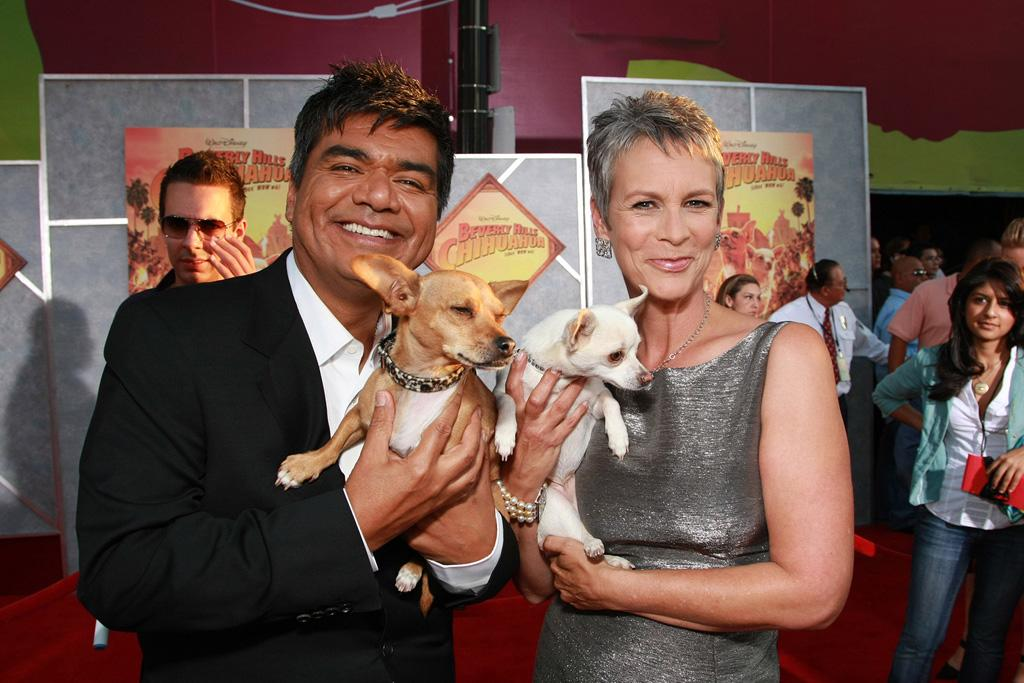 """<a href=""""http://movies.yahoo.com/movie/contributor/1802477849"""">George Lopez</a> and <a href=""""http://movies.yahoo.com/movie/contributor/1800016528"""">Jamie Lee Curtis</a> at the Los Angeles premiere of <a href=""""http://movies.yahoo.com/movie/1809922965/info"""">Beverly Hills Chihuahua</a> - 09/18/2008"""