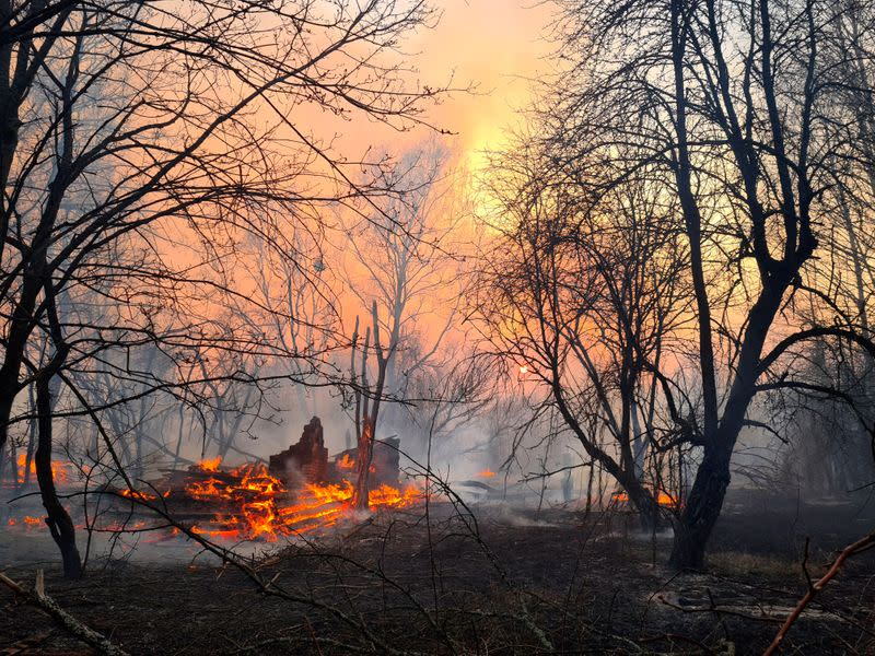 A fire burns in the exclusion zone around the Chernobyl nuclear power plant