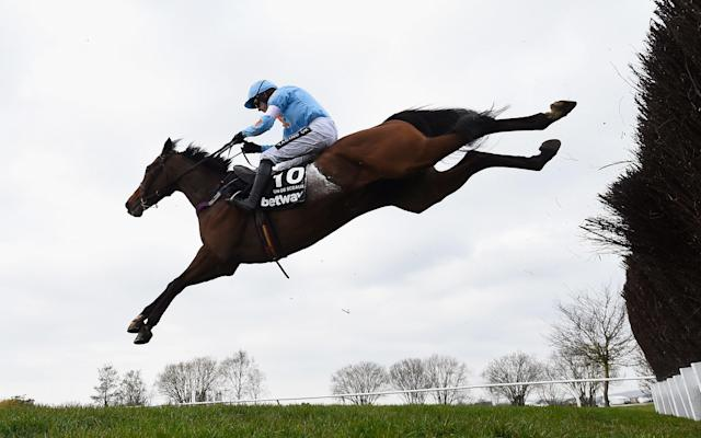 <span>Un de Sceaux was second in the Champion Chase last year, behind Sprinter Scare</span> <span>Credit: Getty Images </span>
