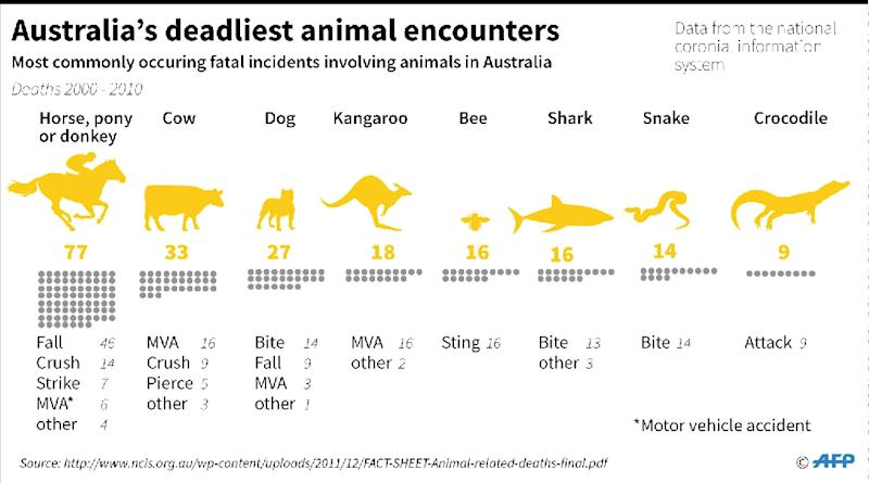 Data on most commonly occuring animal-related deaths in Australia (AFP Photo/John SAEKI)