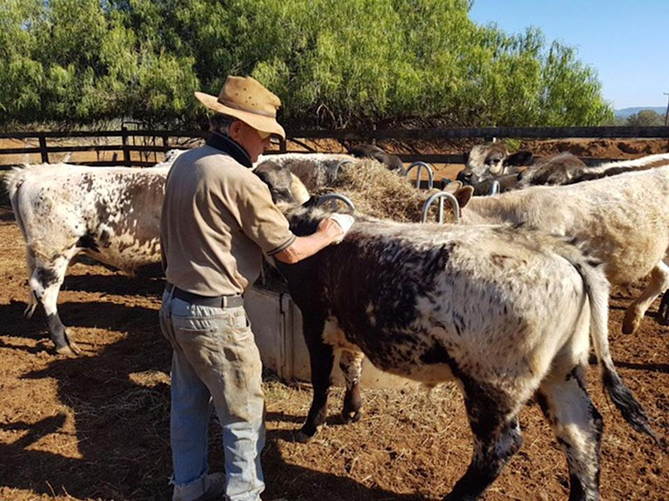 """Ms King says the drought """"snuck up"""" on the family a few years ago. Photo: Supplied"""