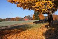 """<p>When it comes to fall foliage in Connecticut, there's no place more beautiful than the historic town of Litchfield, which often offers the very first views of changing leaves every autumn.</p><p><strong>RELATED: </strong><a href=""""https://www.goodhousekeeping.com/life/g4561/fall-activities/"""" rel=""""nofollow noopener"""" target=""""_blank"""" data-ylk=""""slk:15 Fun Fall Activities That Make the Most of the Best Season"""" class=""""link rapid-noclick-resp"""">15 Fun Fall Activities That Make the Most of the Best Season</a></p>"""