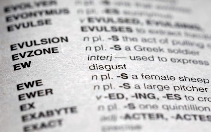 John Chew, the chief executive of NASPA, petitioned the organisation's advisory board last month to remove some or all of the words labelled offensive by the Merriam-Webster dictionary. - AP