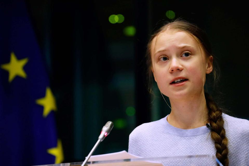 There has been online backlash against Thunberg (AFP via Getty Images)