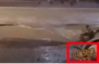 The video carries a logo at the bottom right which is written in Chinese.