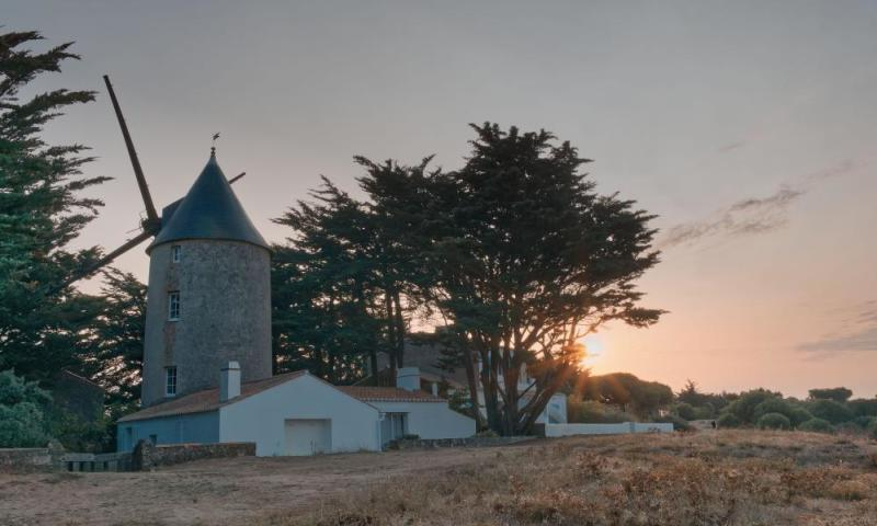 Windmill in the middle of sand dunes, Noirmoutier