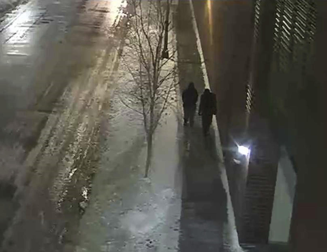 "This image provided by the Chicago Police Department and taken from surveillance video shows two people of interest in an attack on ""Empire"" actor Jussie Smollett walking along a street in the Streeterville neighborhood of Chicago, early Tuesday, Jan. 29, 2019. (Courtesy of Chicago Police Department via AP)"