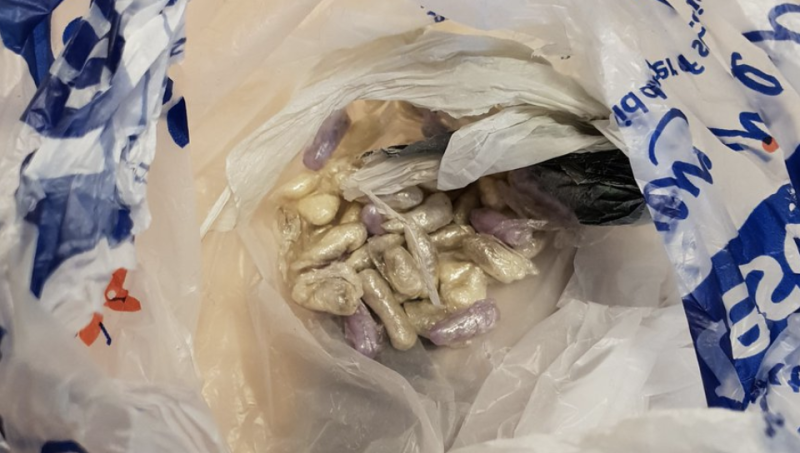 Cat Strolls Into Family Home Carrying A Plastic Bag Full Of Drugs