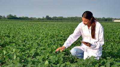 NexusBioAg Launches Next Generation - Pulse, Cereal, and Soybean Inoculants
