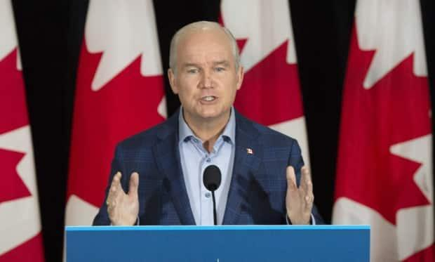 Conservative Leader Erin O'Toole told reporters Friday in Corner Brook, NL. that his plan to reduce emissions is achievable and would not cripple the economy. (Ryan Remiorz/The Canadian Press - image credit)