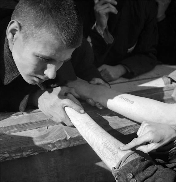 A young man reads the identification number of a Jewish prisoner after the liberation of the Dachau Nazi concentration camp in April 1945 (AFP Photo/ERIC SCHWAB)