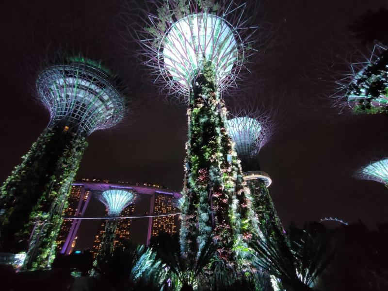 Gardens by the Bay night time show