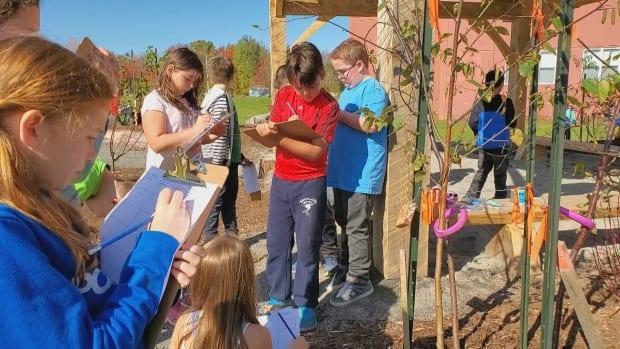 Students at Glooscap Elementary in Canning, N.S., started doing outdoor classes back in 2019. In this file photo students catalogue trees they planted.
