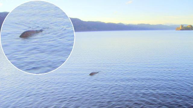 Scottish Sailor Claims To Have Best Picture Yet Of Loch Ness Monster