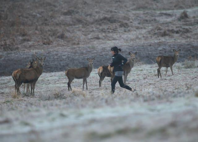 A woman jogging in Richmond Park, in south west London