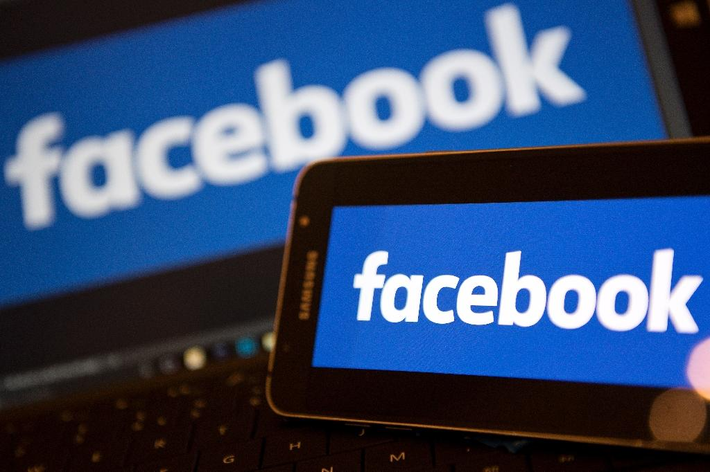 Facebook draws its wealth from millions of accounts across Europe by being based in Ireland (AFP Photo/Justin TALLIS)