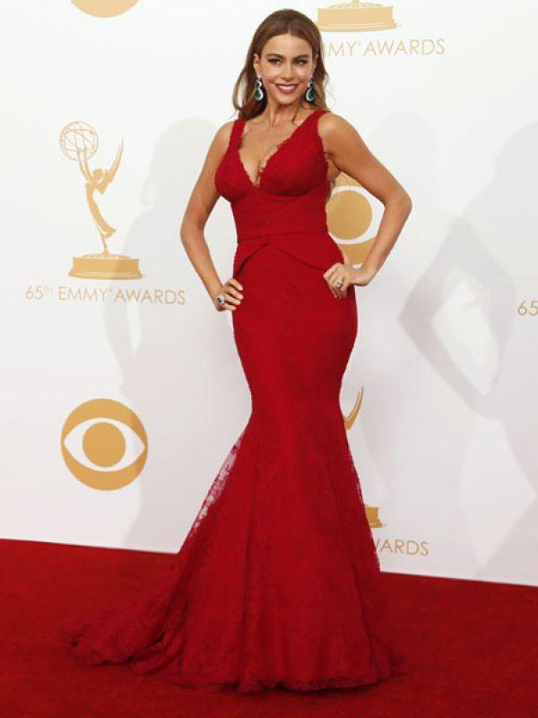 <p><strong>Sofia Vergara</strong>: Sofia who plays Gloria in <em>Modern Family</em> wore an attractive red lacy number by Vera Wang. She paired her enchanting outfit with green and blue statement earrings.</p>
