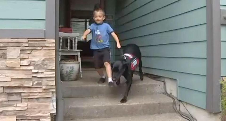 Toby Hardesty, 6, has a service dog named Hawkeye who sniffs out gluten before he can touch it. Toby has coeliac disease. Source: Fox 6