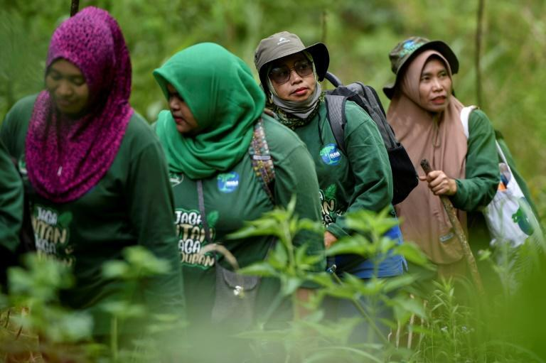 A unique team of female forest rangers patrols the jungle in Sumatra, battling poachers and illegal loggers