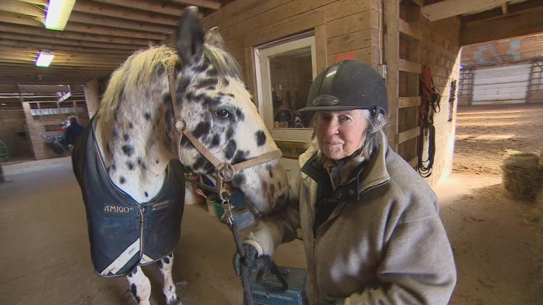 'I call him my therapist': An 83-year-old rider's special bond with her horse