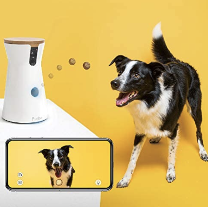 Scout is going to be over the moon with his fancy new gizmo. (Photo: Amazon)