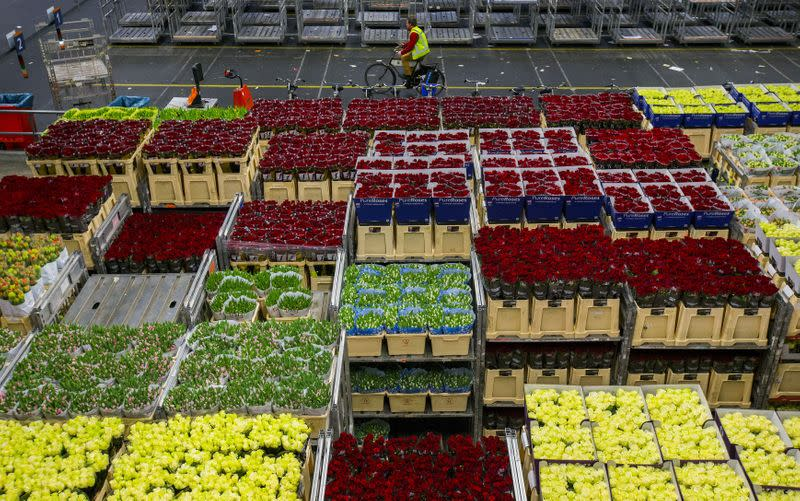 FILE PHOTO: The Wider Image: A floral business