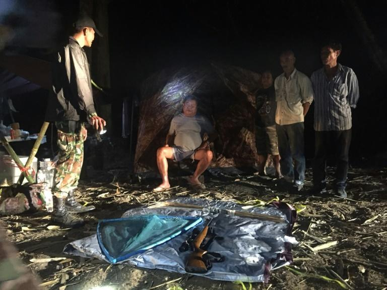 Ital-Thai president arrested for poaching at wildlife sanctuary granted bail