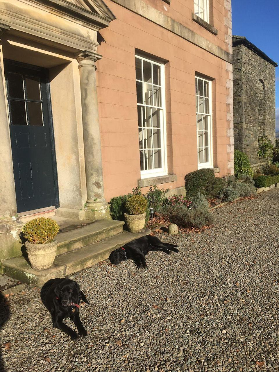 """<p>Formerly owned by none other than Beatrix Potter, the illustrious <a href=""""https://go.redirectingat.com?id=127X1599956&url=https%3A%2F%2Fwww.booking.com%2Fhotel%2Fgb%2Fbelmount-hall.en-gb.html%3Faid%3D2070935%26label%3Ddog-friendly-bed-breakfast&sref=https%3A%2F%2Fwww.countryliving.com%2Fuk%2Ftravel-ideas%2Fdog-friendly%2Fg35121802%2Fdog-friendly-bed-and-breakfast-uk%2F"""" rel=""""nofollow noopener"""" target=""""_blank"""" data-ylk=""""slk:Belmount Hall"""" class=""""link rapid-noclick-resp"""">Belmount Hall</a> sits proudly in the heart of the Lake District, offering views across Esthwaite Water and the Lakeland Hills.</p><p>The dog-friendly B&B's bedrooms have had their period features accentuated, and complemented by both antique pieces and modern en-suites (complete with a power shower).</p><p>Dog-friendly pub grub can be found in the centre of Hawkshead, just a 15-minute walk away, while the shores of Windermere is just under 20 minutes away by car.</p><p><a class=""""link rapid-noclick-resp"""" href=""""https://go.redirectingat.com?id=127X1599956&url=https%3A%2F%2Fwww.booking.com%2Fhotel%2Fgb%2Fbelmount-hall.en-gb.html%3Faid%3D2070935%26label%3Ddog-friendly-bed-breakfast&sref=https%3A%2F%2Fwww.countryliving.com%2Fuk%2Ftravel-ideas%2Fdog-friendly%2Fg35121802%2Fdog-friendly-bed-and-breakfast-uk%2F"""" rel=""""nofollow noopener"""" target=""""_blank"""" data-ylk=""""slk:CHECK AVAILABILITY"""">CHECK AVAILABILITY</a></p>"""