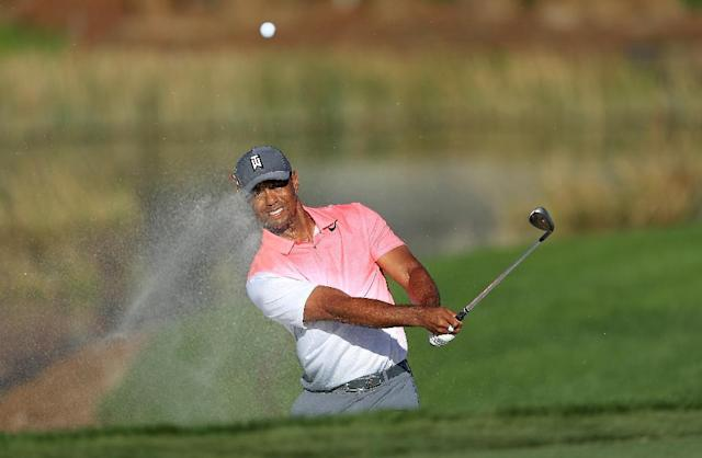 Tiger Woods is vying to become a contender again after spinal fusion surgery in April (AFP Photo/SAM GREENWOOD)