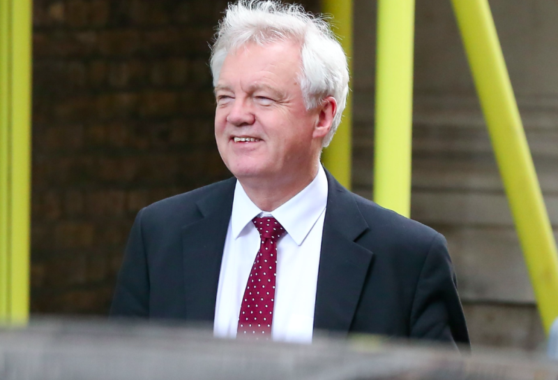 It was reported that Oliver Robbins did not see eye-to-eye with Brexit minister David Davis, pictured (Picture: Rex)