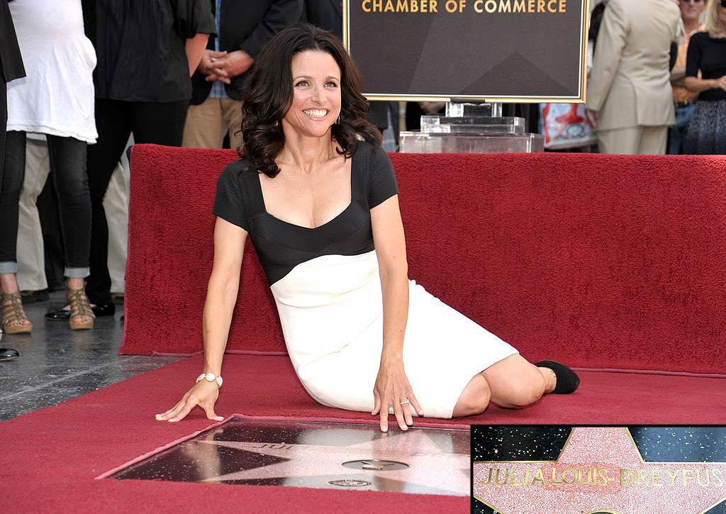 """Julia Louis-Dreyfus received a star on the Hollywood Walk of Fame Tuesday. Just one problem, her star said """"Luis"""" not """"Louis."""" Workers quickly printed up a new section with the correct spelling, carved the misspelled name out of the star and swapped out the piece with the typo. The """"Seinfeld"""" actress reportedly thought the mix-up was """"hilarious."""" John Shearer/<a href=""""http://www.wireimage.com"""" target=""""new"""">WireImage.com</a> - May 4, 2010"""
