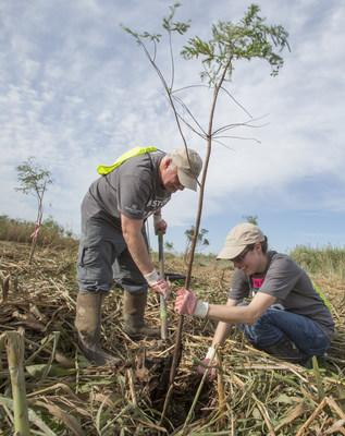 Restore the Earth Foundation tree planting and coastal restoration kick off of their project to restore 4,000 acres of freshwater-forested wetland in the Pointe-aux-Chenes Wildlife Management Area.