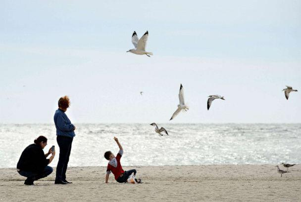 PHOTO: A family feeds seagulls on the beach in Cape May, New Jersey, Oct. 27, 2012. (William Thomas Cain/Getty Images, File)