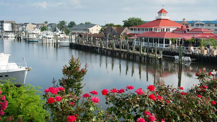 A nautical scene of a canal in a small town with roses in the foreground.