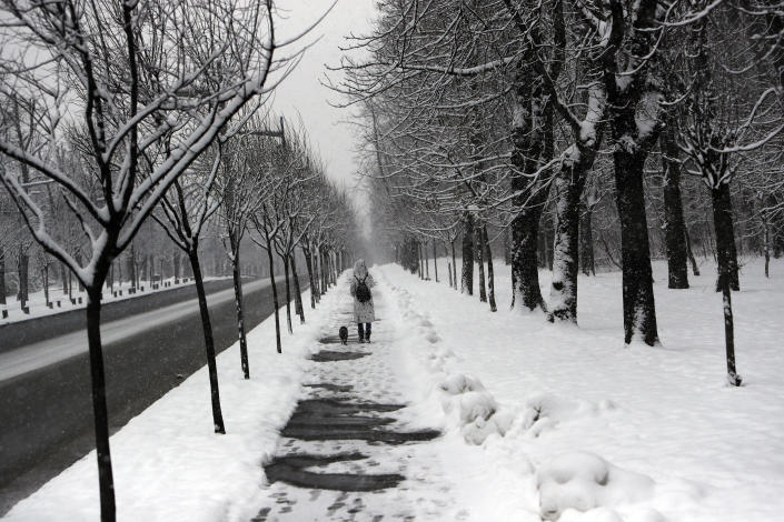 A woman with a dog walks through a snow covered street in Belgrade, Serbia, Sunday, Jan. 17, 2021. MMeteorologists predict sub zero temperatures in Serbia throughout the coming week. (AP Photo/Darko Vojinovic)