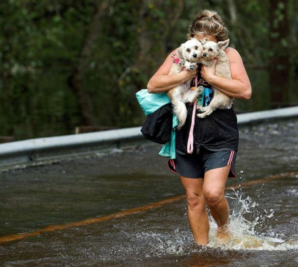 PHOTO: Lisa Shackleford hugs her pet dogs Izzy and Bella as she wades through flood waters to safety while the Northeast Cape Fear River breaks its banks in the aftermath Hurricane Florence in Burgaw, North Carolina, Sept. 17, 2018. (Jonathan Drake/Reuters)