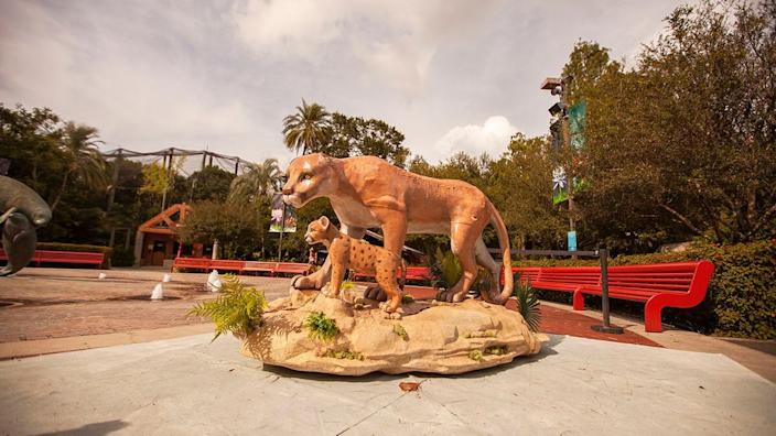 Before they start melting, these sculptures look just like ordinary Florida panthers.